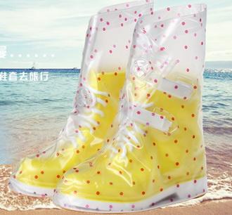 ถุงคุลมรองเท้า v.1