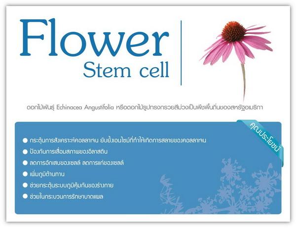 Phyto SC Stem Cell (ไฟโตเอสซี สเต็มเซลล์)