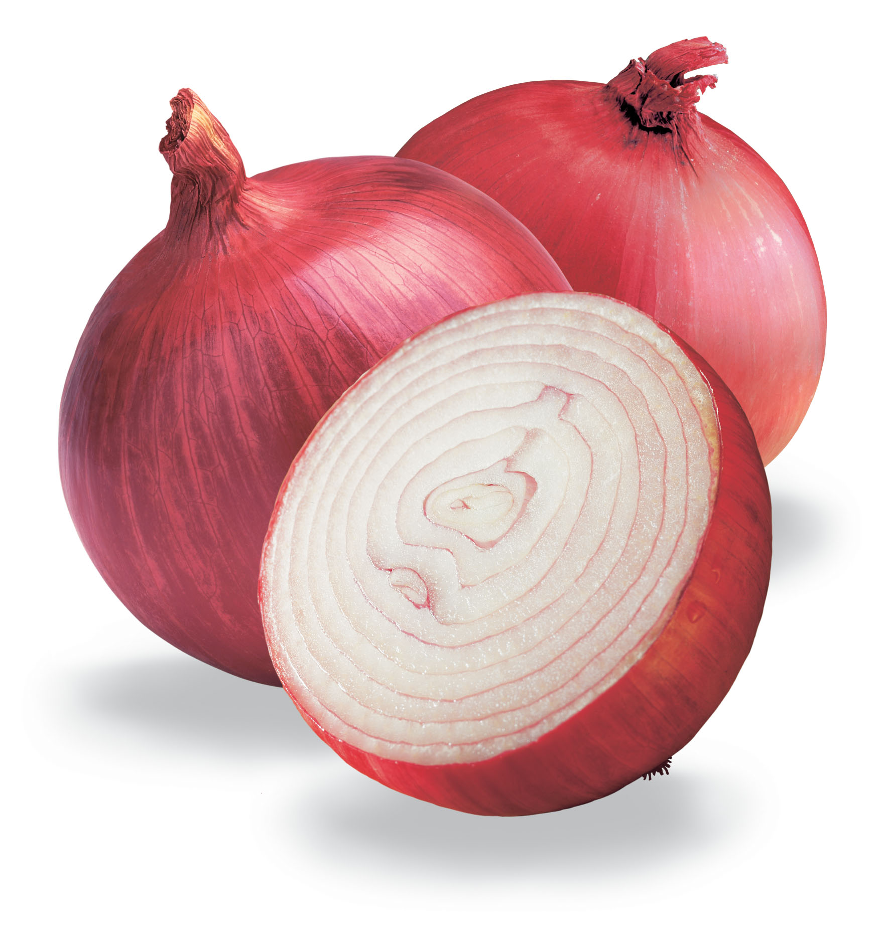 สารสกัดหอมหัวใหญ่ (ผล) (Onion extract)