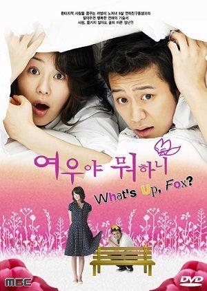 Foxy Lady รักครั้งนี้ จั๊กจี้หัวใจ 8 แผ่น DVD พากย์ไทย