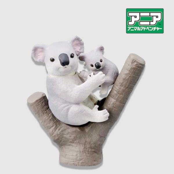 หมีโคล่าแสนรู้ ของเล่นเพื่อการเรียนรู้ ของเล่นเสริมสร้างความฉลาด