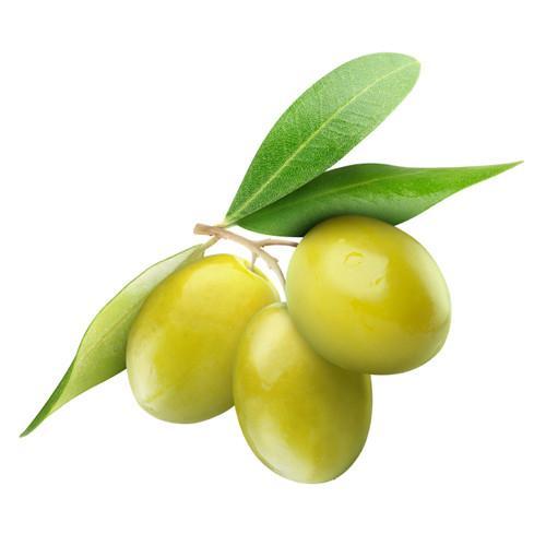 หัวน้ำหอม กลิ่น มะกอก Olive 450 ml 005768