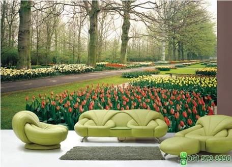 ภาพวิวสวนดอกทิวลิป