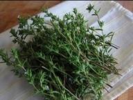 ซัมเมอร์ เซเวอรี่ (summer savory) 100 เมล็ด